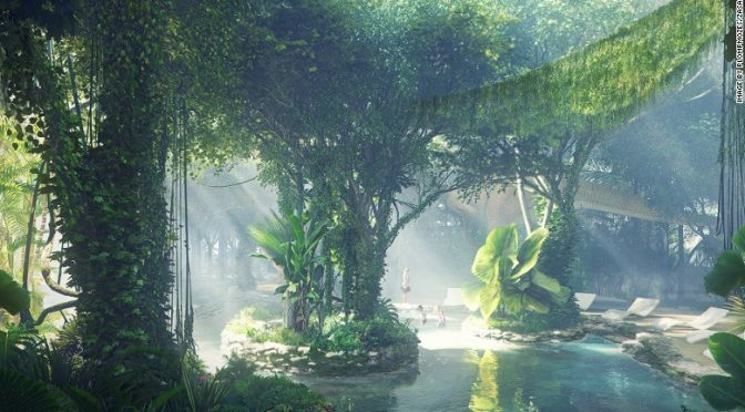 Rainforest in a Hotel? Only in Dubai!