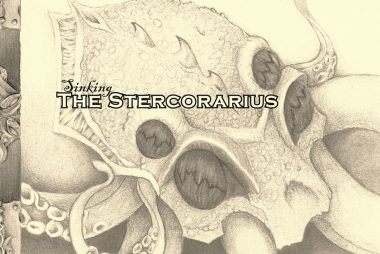 Sinking the Stercorarius cover